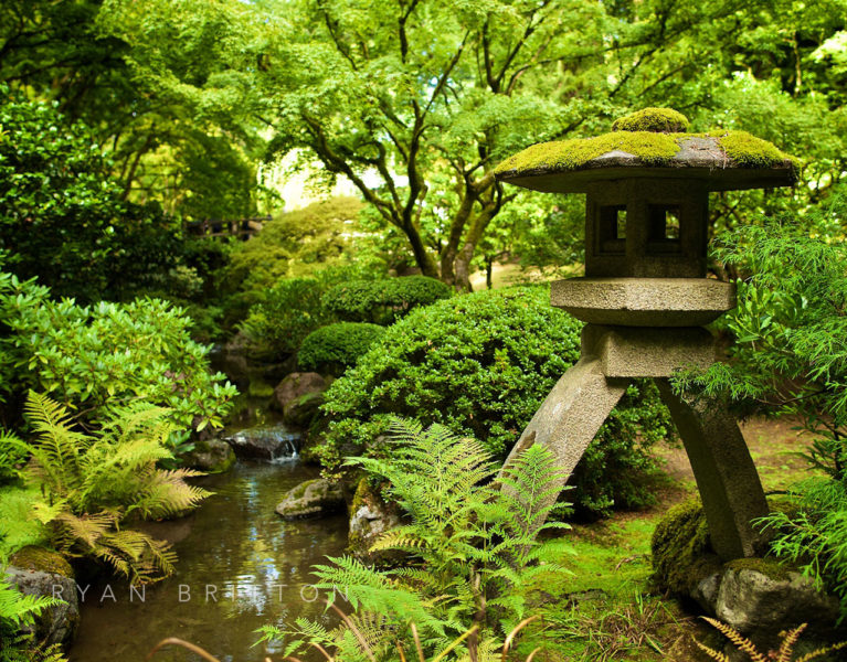 Lantern - Photo of a mossy stone lantern in a Japanese Garden next to a stream